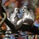 Two Lemurs talking in a tree